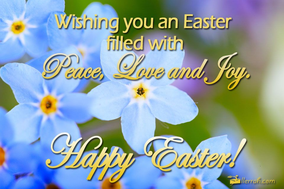 Easter Filled With Peace Love And Joy Happy Easter Pictures Happy Easter Quotes Easter Sunday Images
