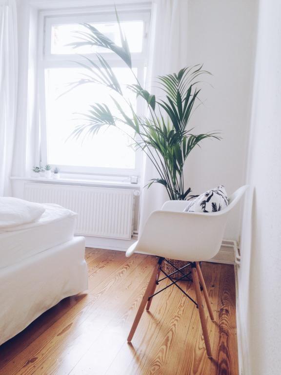 Palmen Pflanzen sind diesen Sommer total im Trend! Also stellen sie - Pflanzen Deko Wohnzimmer