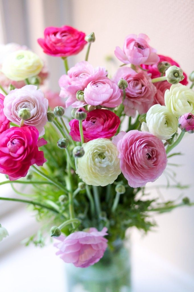 Pink Ranunculus flower arrangement | Flowers of the Day: Daily ...