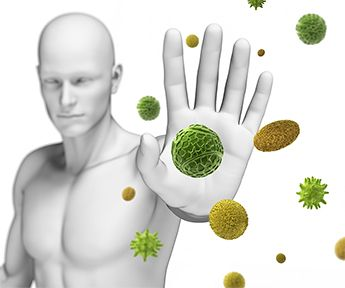 the human defense system Introduction to the human immune system the human body is often described as being 'at war' by this, it is meant that the body is constantly under attack from things that are trying to do it harm.