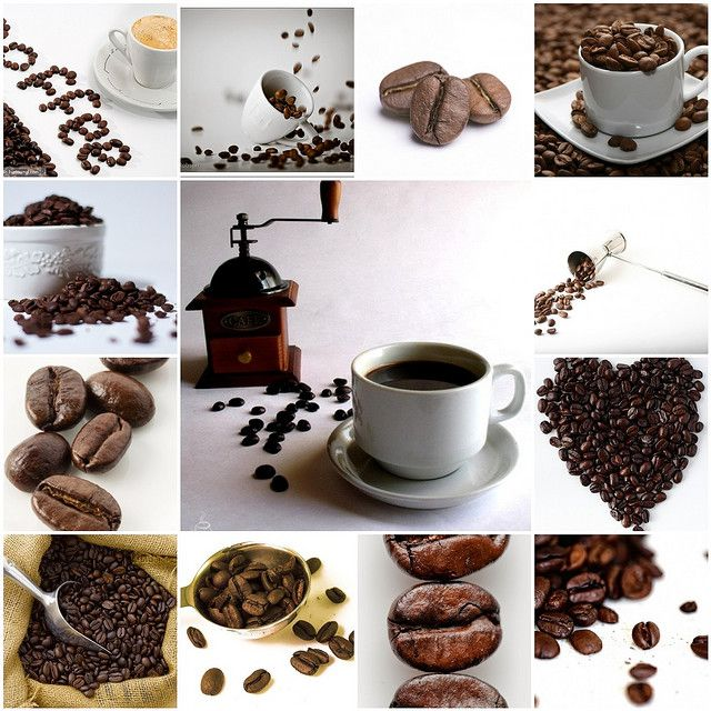 I'm a fiend for this bean of caffine.... (With images ...