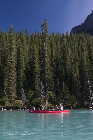Canoe Lake Louise and Banff National Park, Alberta | The Planet D