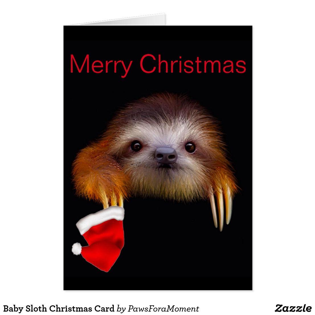 Baby sloth christmas card christmas cards