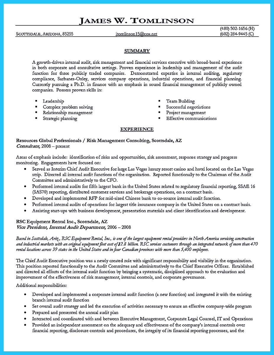 cool understanding a generally accepted auditor resume