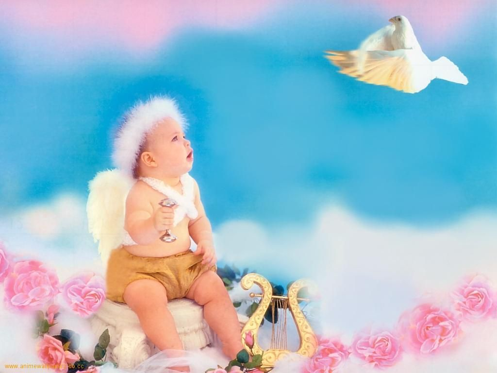 Baby boy background wallpaper baby boy background images baby boy - Funny Baby Boy Pictures And Wallpapers