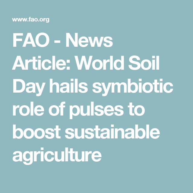 FAO -News Article:World Soil Day hails symbiotic role of pulses to boost sustainable agriculture