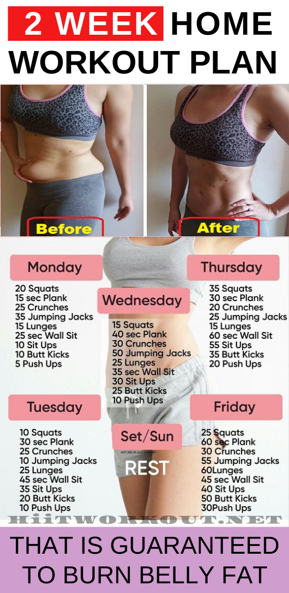 Photo of 2 week workout plan at home which will provide you a perfect body shape that you…