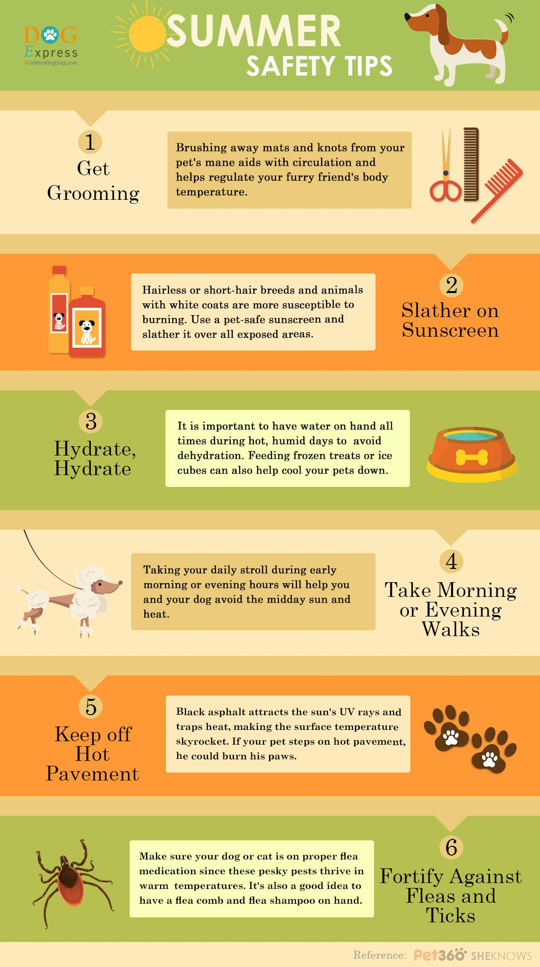 Summer Safety Tips For Dogs [Infographic] Summer safety