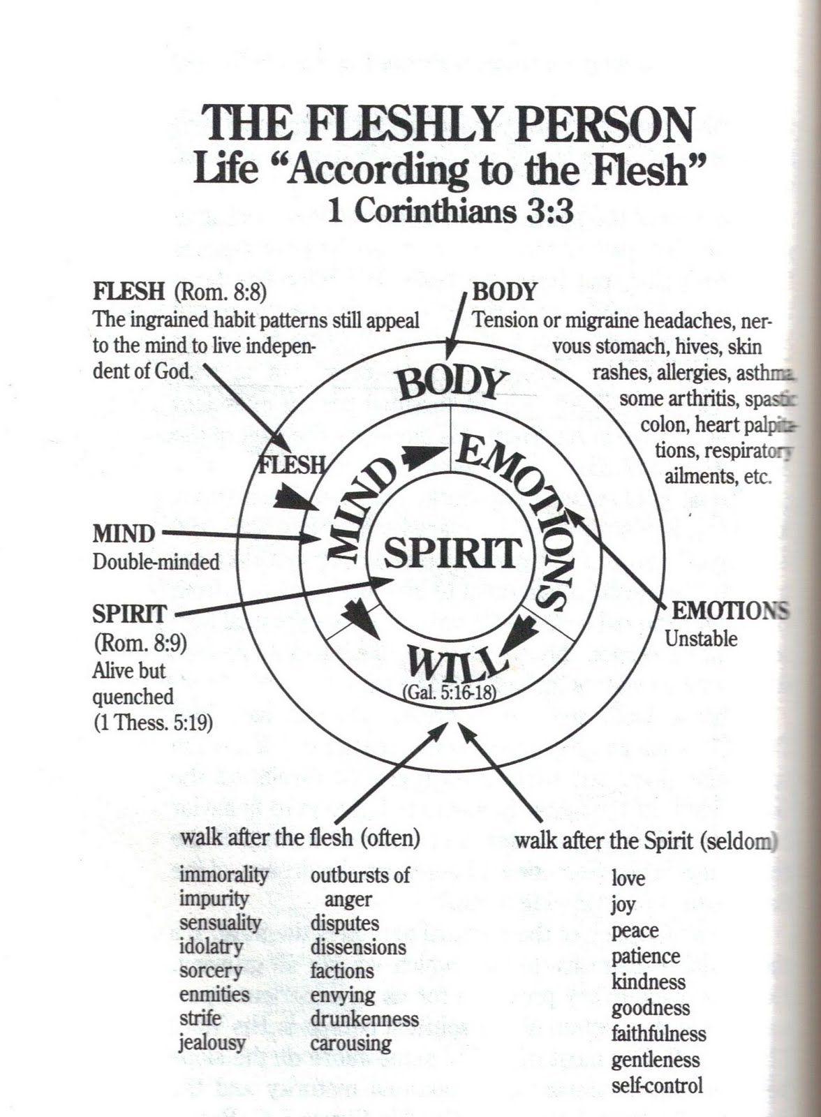 Pin By Biblical Spiritual By Divine Dame On Romans Audio Youtu Hssatvj7nxa