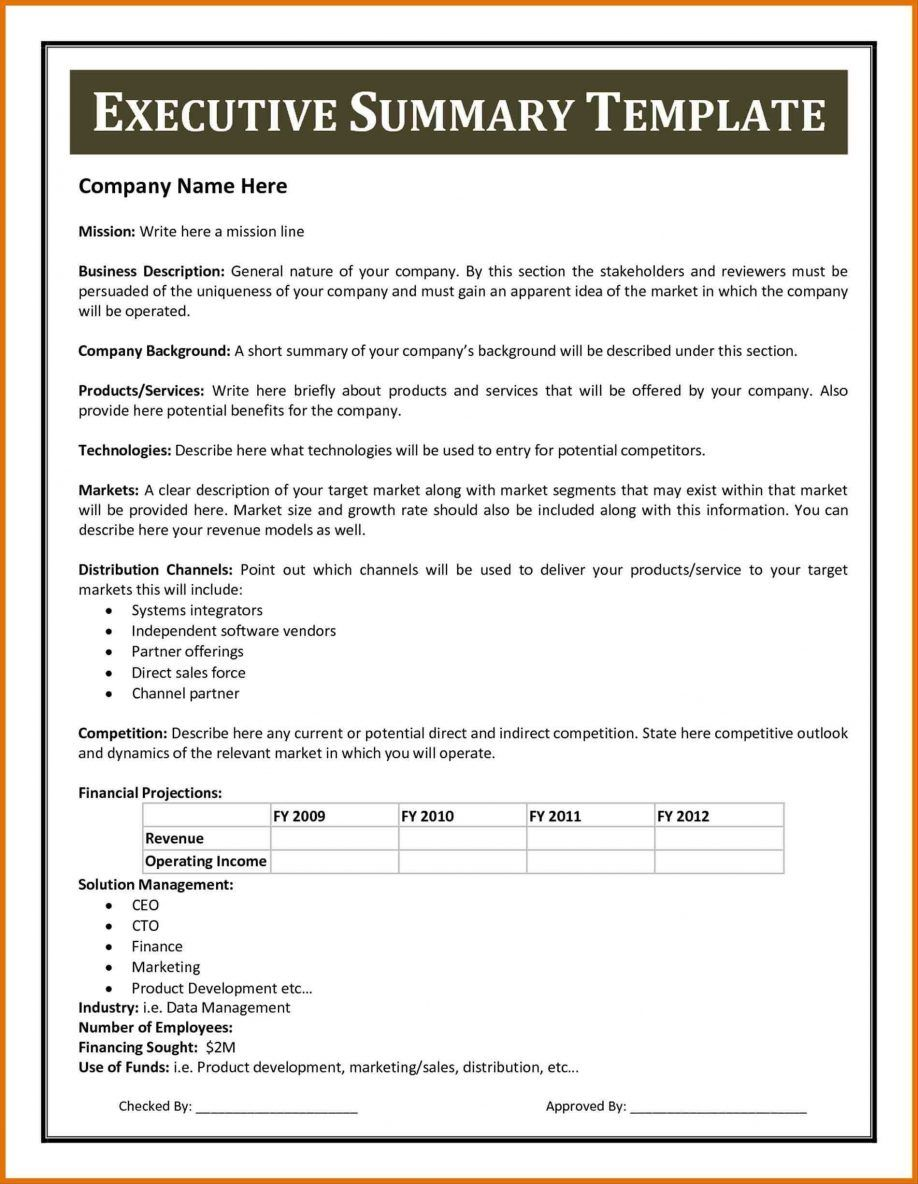 030 Executive Summary Report Example Pdf Project Cost