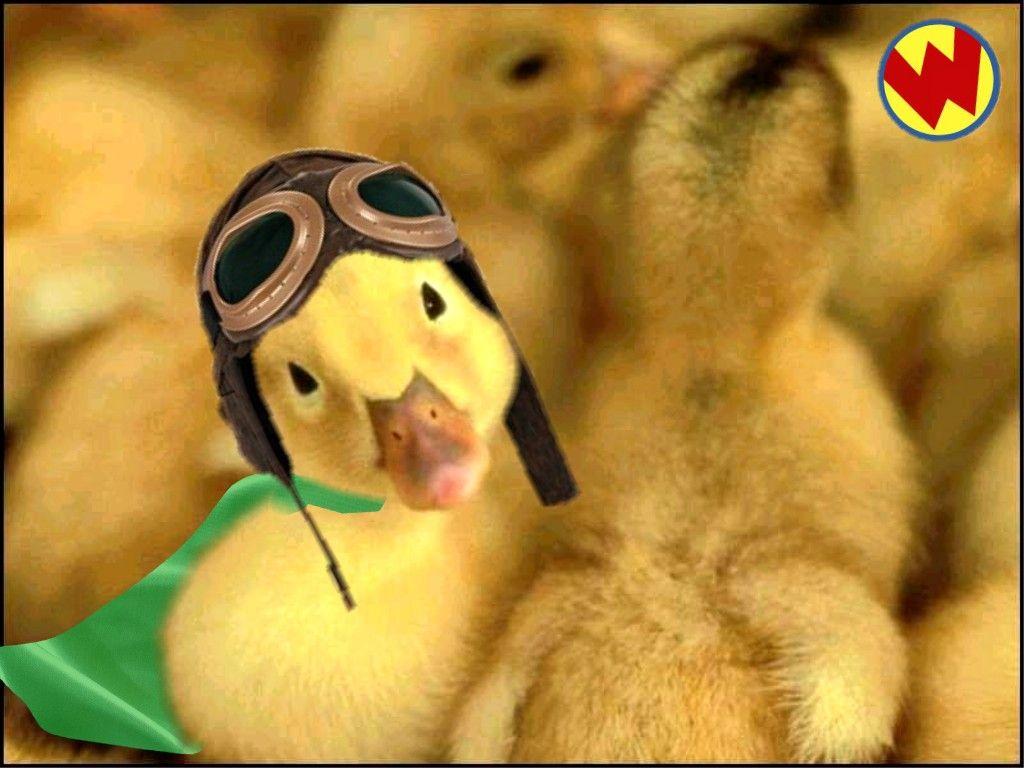 Wonder Pets Ming Ming Duckling Superhero Fisher Price Mattel