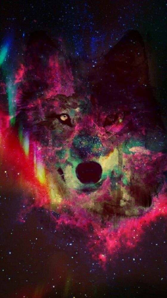 Galaxy Phone Wallpaper Hipster Wolf Tumblr