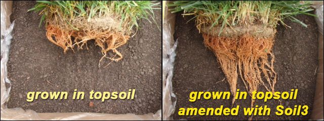 Topsoil vs garden soil garden ftempo for Topsoil vs potting soil