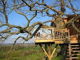 Tree house in le Perche, La Renardière, Orne, Normandy, France