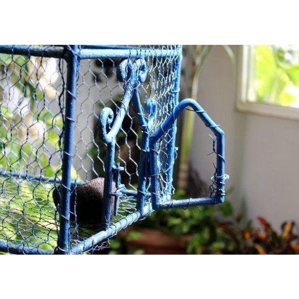Blue Bird Cage with Broken Open Door, Break Free, Old Baroque style,... (£8.02) ❤ liked on Polyvore featuring home and home decor