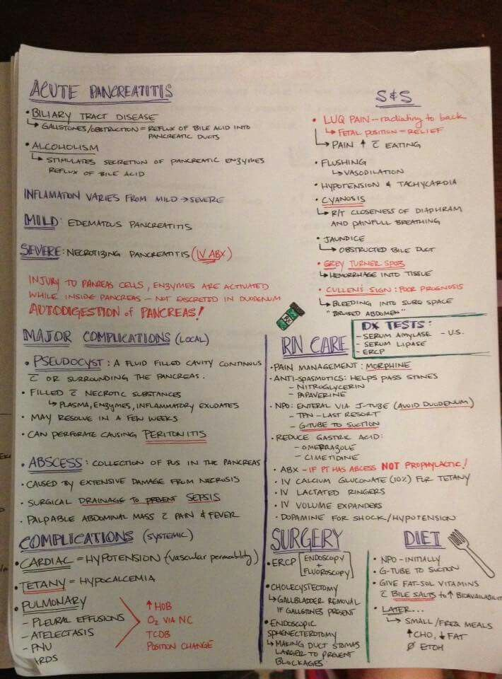 Pin By Taylor Moore On School Pinterest Nursing Students