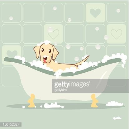 Vector Illustration Of A Little Dog Must Take A Bath In The