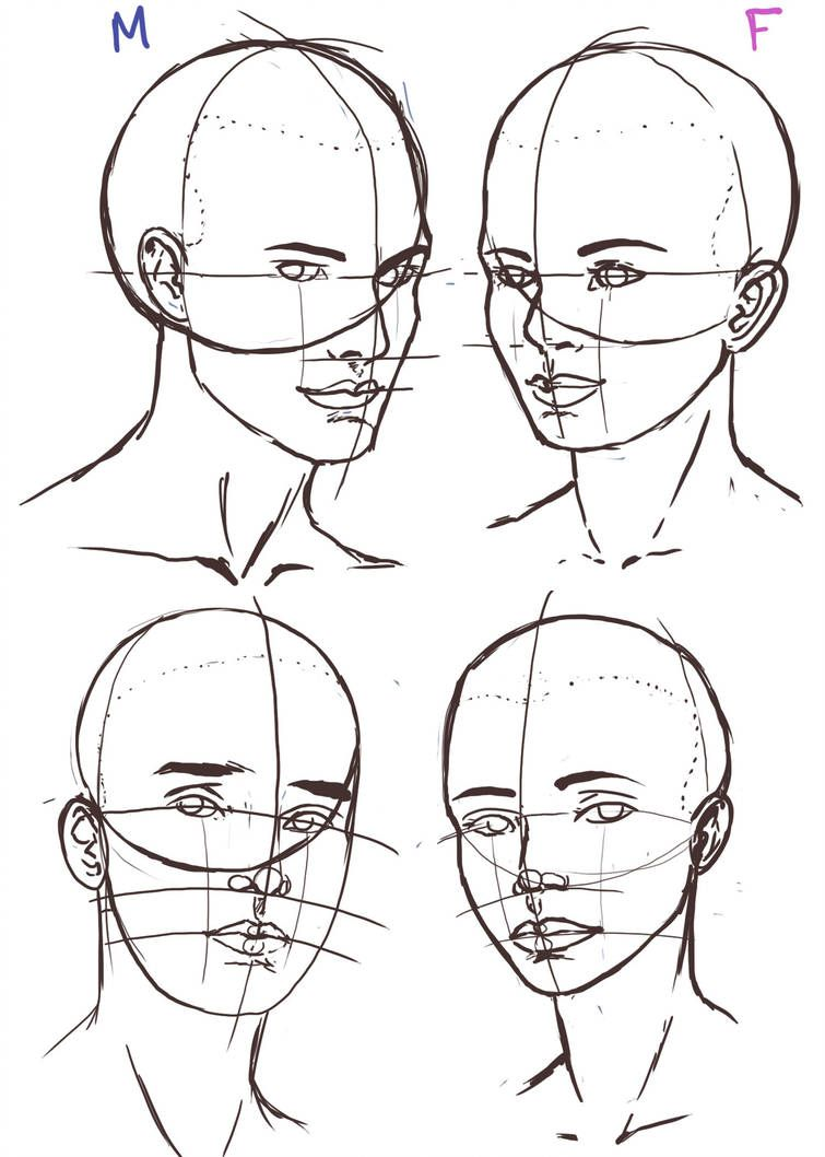 How To Draw The Human Head Draw As A Maniac Drawing The Human Head Human Drawing Sketches