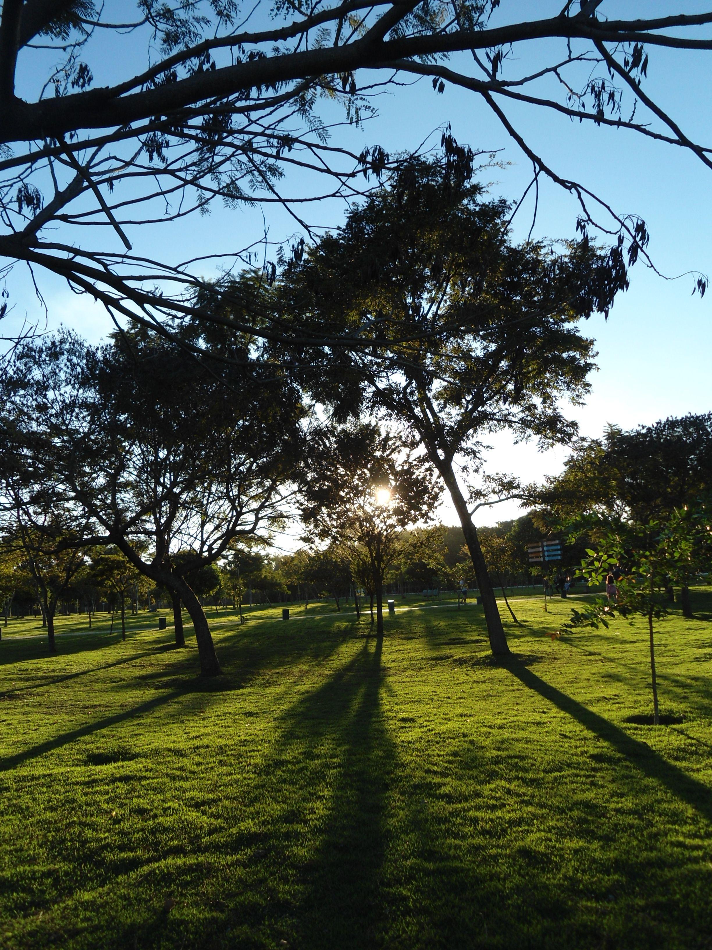 Parque Ecológico - BH