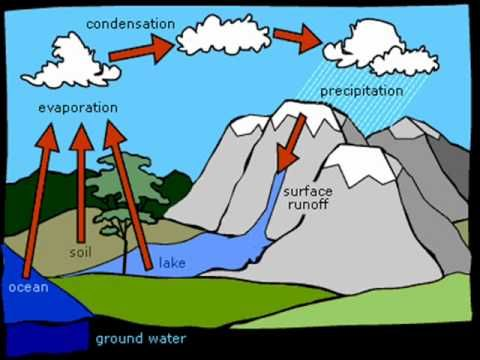 Water And the Water cycle For KS1 and KS2 children, Water.