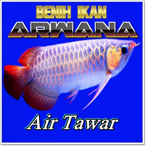 Download Gambar Ikan Arwana Download Cara Cepat Ternak Ikan Arwana Google Play Softwares Analisis Preferensi Hobiis Terhadap At Ikan Gambar Gambar Bergerak