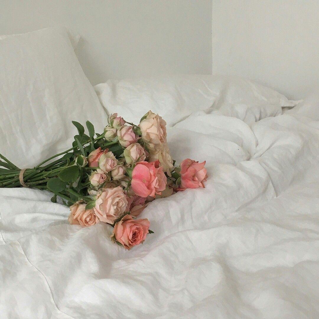 ˗ˏˋpinterest irenayeon ˎˊ˗ Flower aesthetic, Flowers