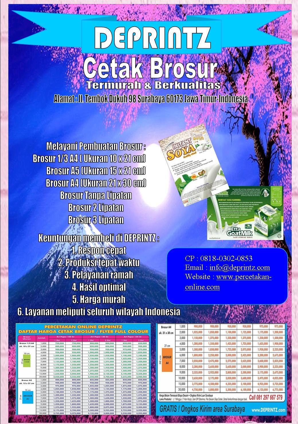 Call Wa 0818 0302 0853 Jasa Desain Brosur Terjangkau Distributor