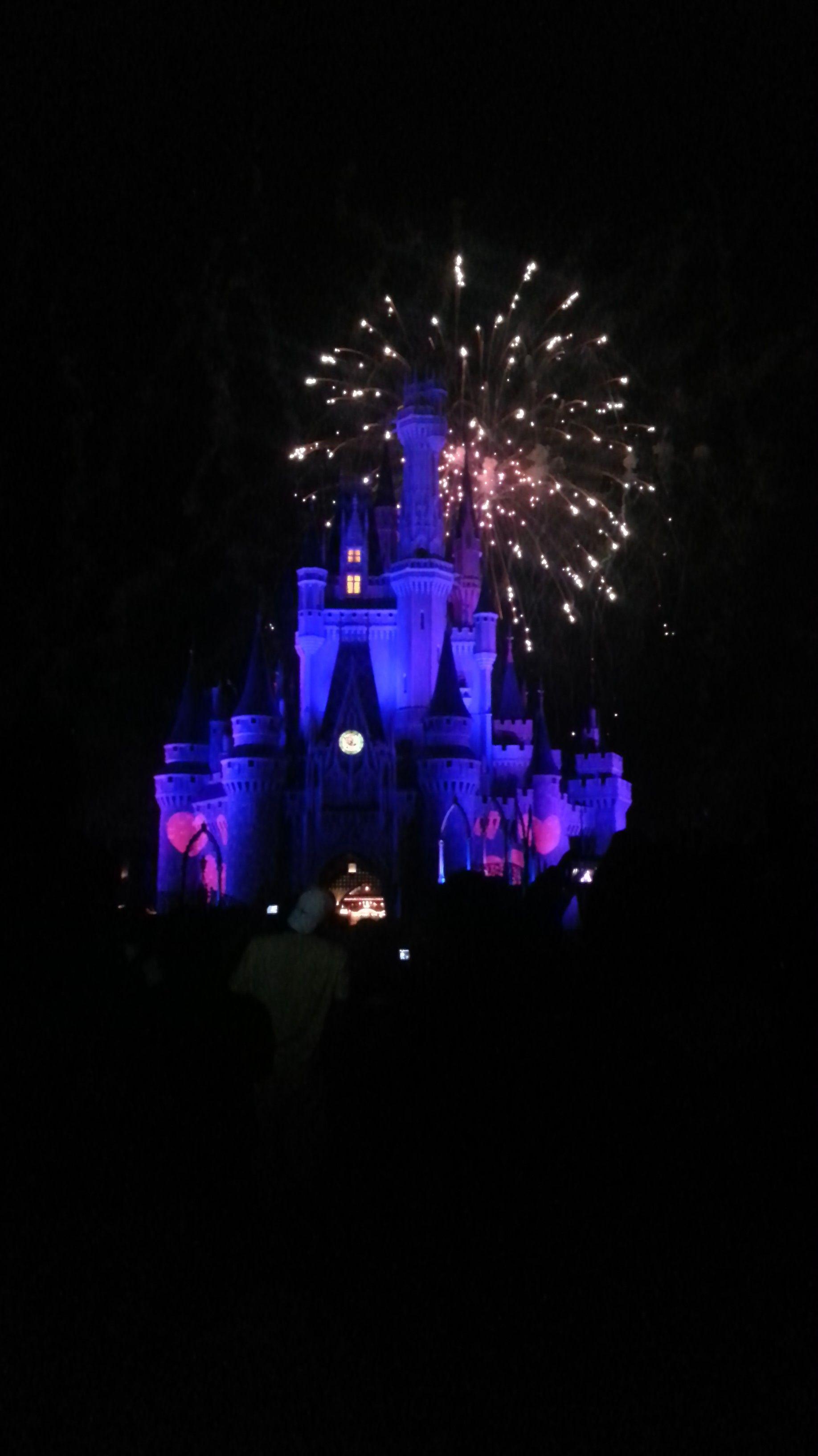 Magic Kingdom, Disneyworld, Florida. #blueisntsobad