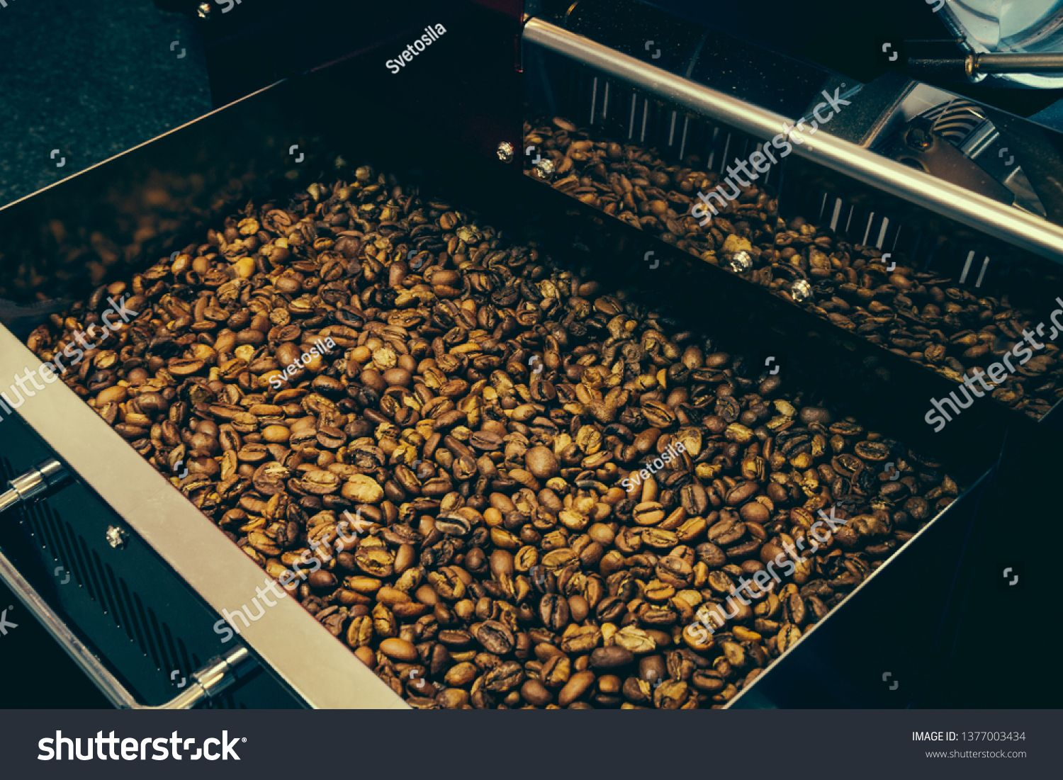 Roaster machine prepared coffee beans. Process of coffee