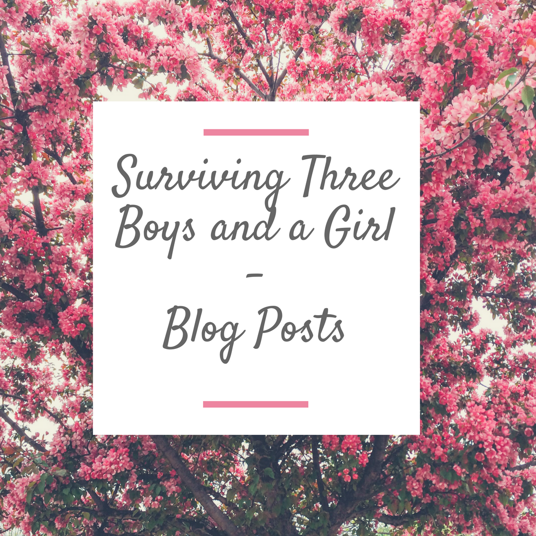 Pin By Surviving Three Boys And A Girl