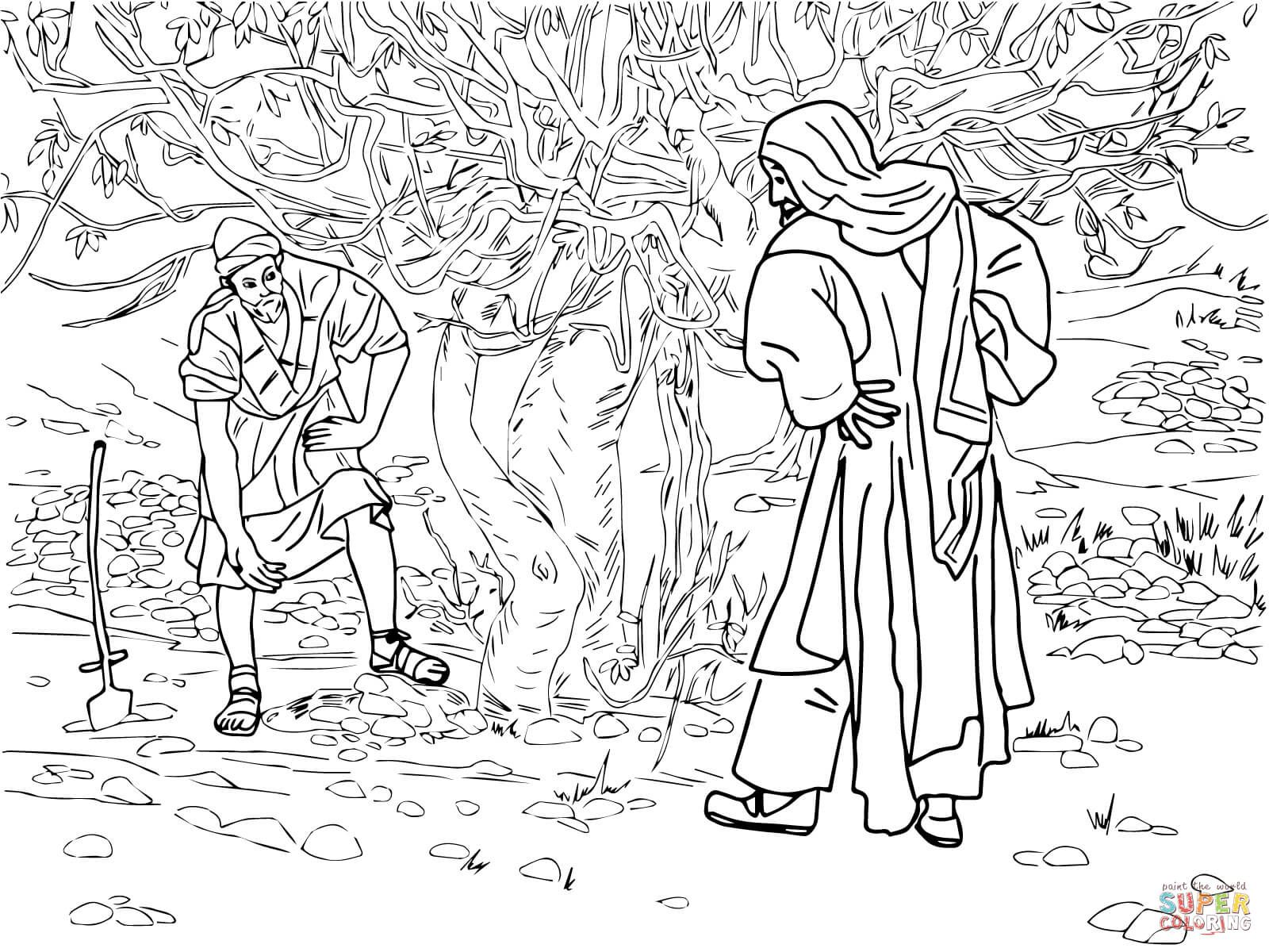 Barren Fig Tree Parable Super Coloring Tree Coloring Page