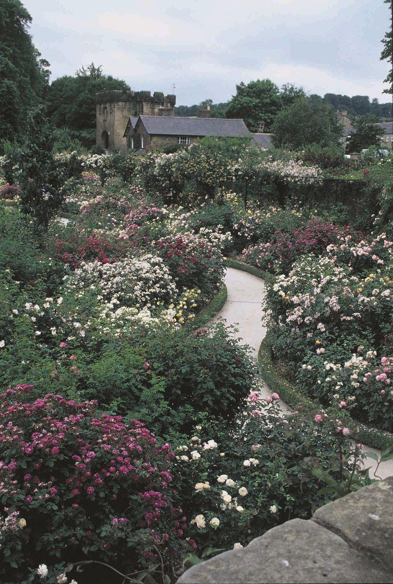 Alnwick Castle Garden | Garden - FlowersPlantsLandscaping ...