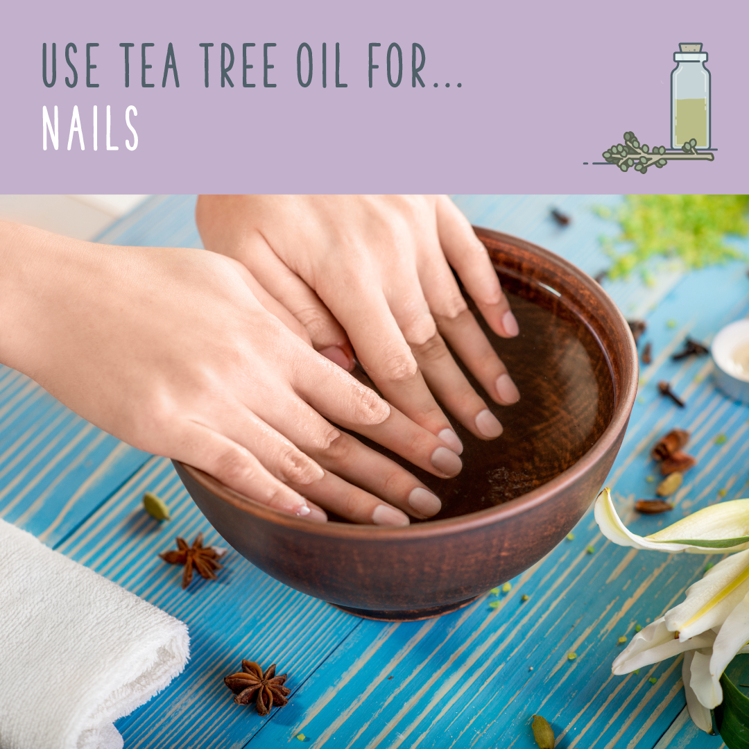 Pin On Tea Tree Oil Uses