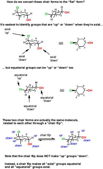Cyclohexane Chairs Equatorial Groups Can Be Up Or Down Too Organic Chemistry Organic Chemistry Study Teaching Chemistry