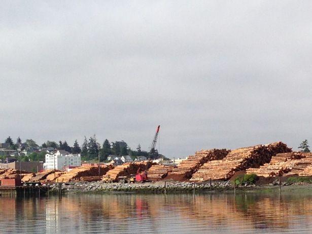 Log Piles @ a local mill, Coos Bay, Oregon. Oregon JOBS