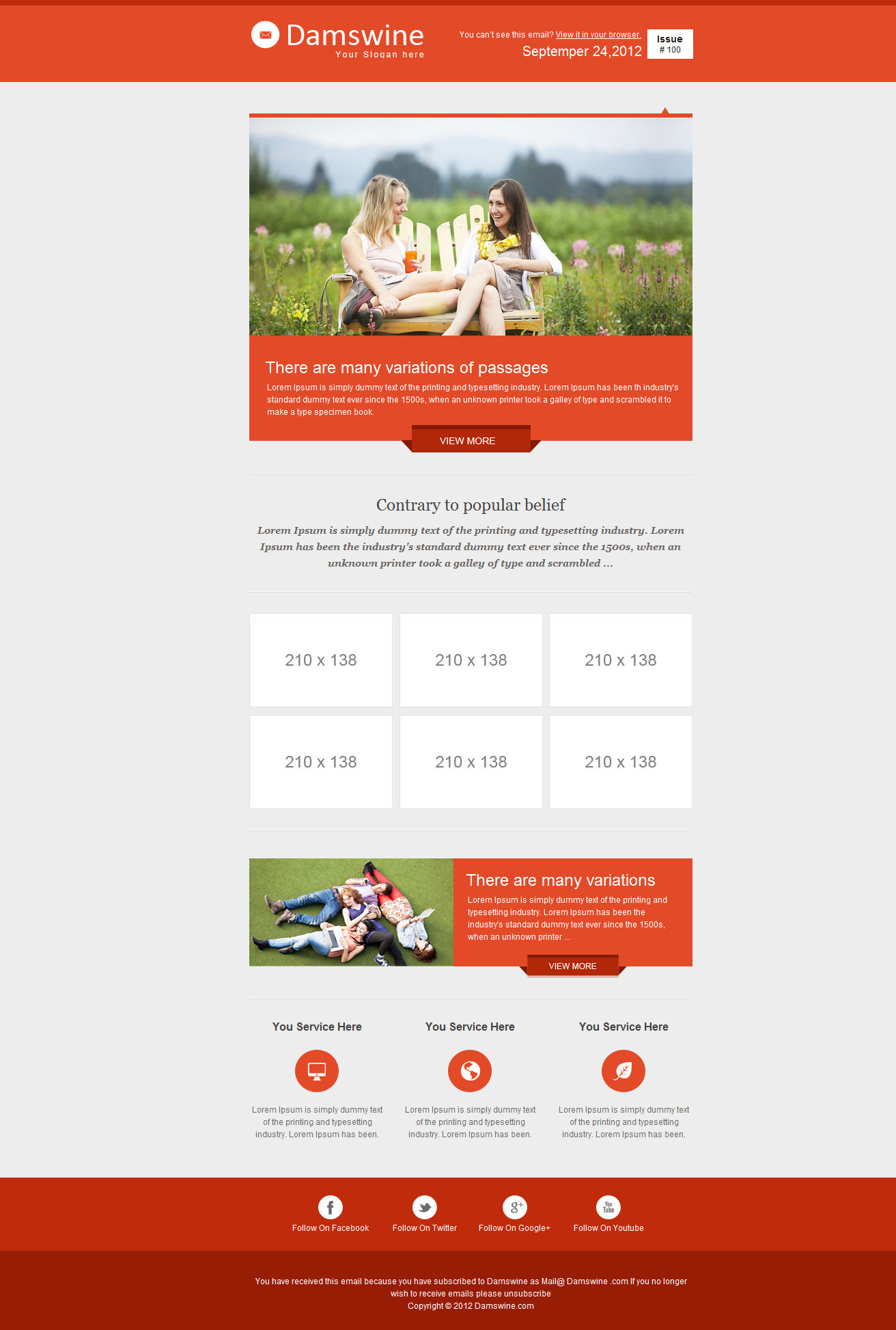 Damswine E-mail Template #Damswine, #mail, #Template