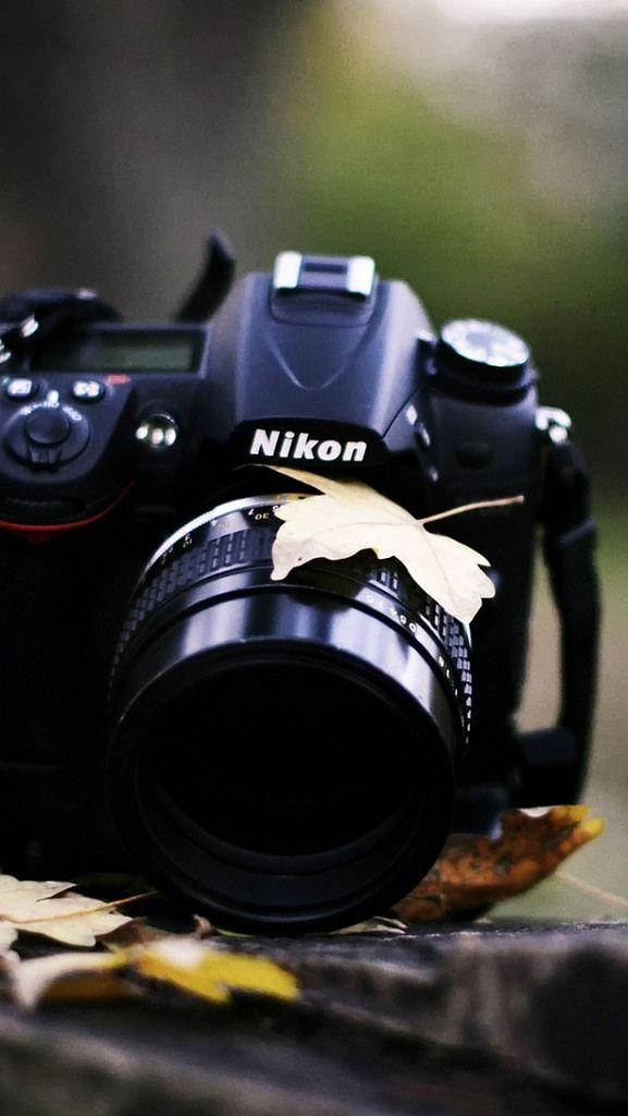 Camera Nikon Grass Leaves Autumn 63570 640x1136 Camera Camera Photography Camera Nikon