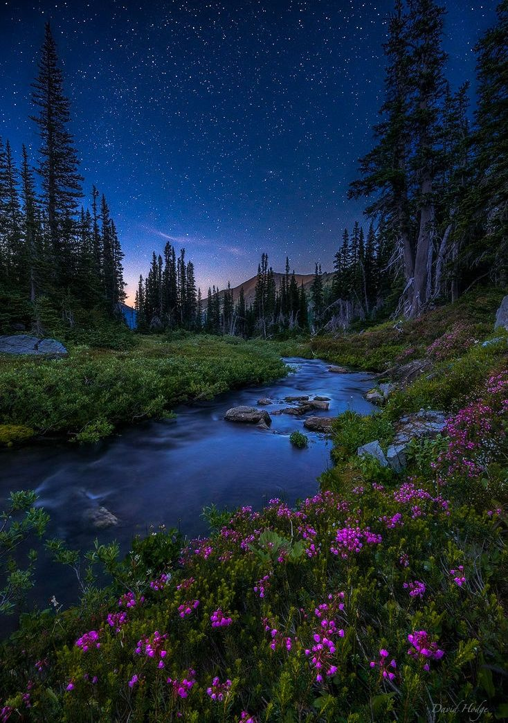 "coiour-my-world: "" Stars Above by David Hodge on Fivehundredpx """