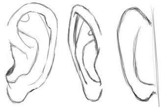 How To Draw Ears Tekenen Gezichten Tekenen Schets Ideeen