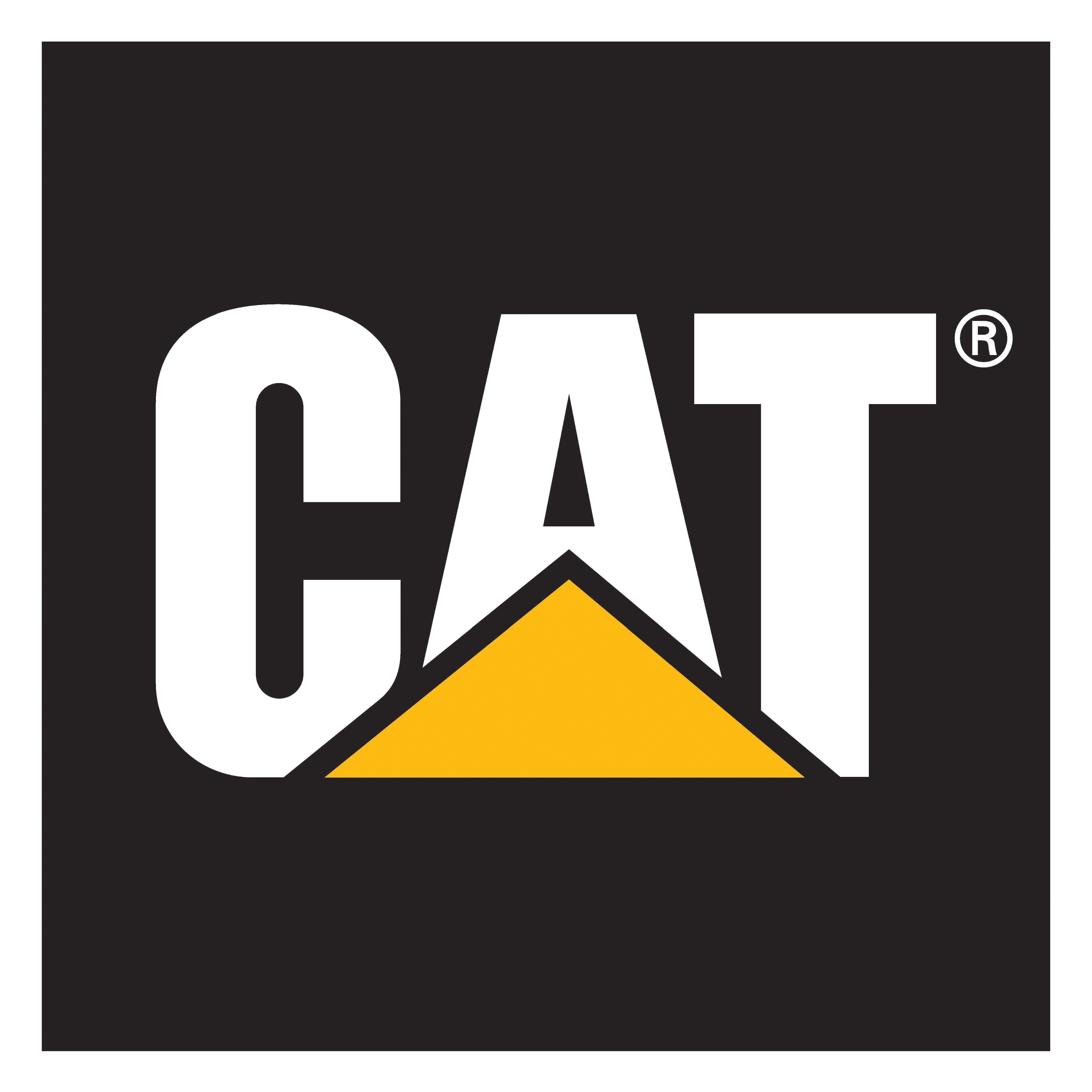 cat logo google search dd pinterest