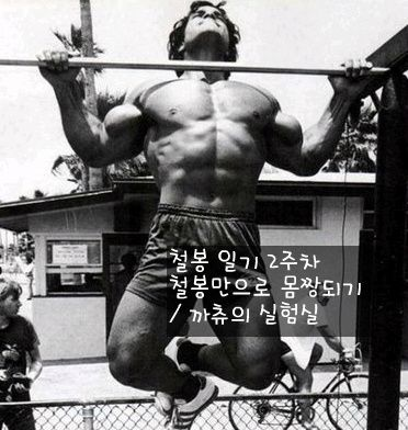 철봉 일기 2주차 철봉만 해서 몸짱되기 까츄의 실험실 운동