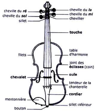 Le violon et les instruments /à cordes