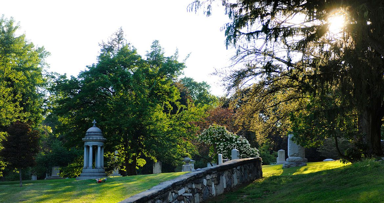 Vinaora Nivo Slider Woodlawn cemetery, Woodlawn, Arboretum