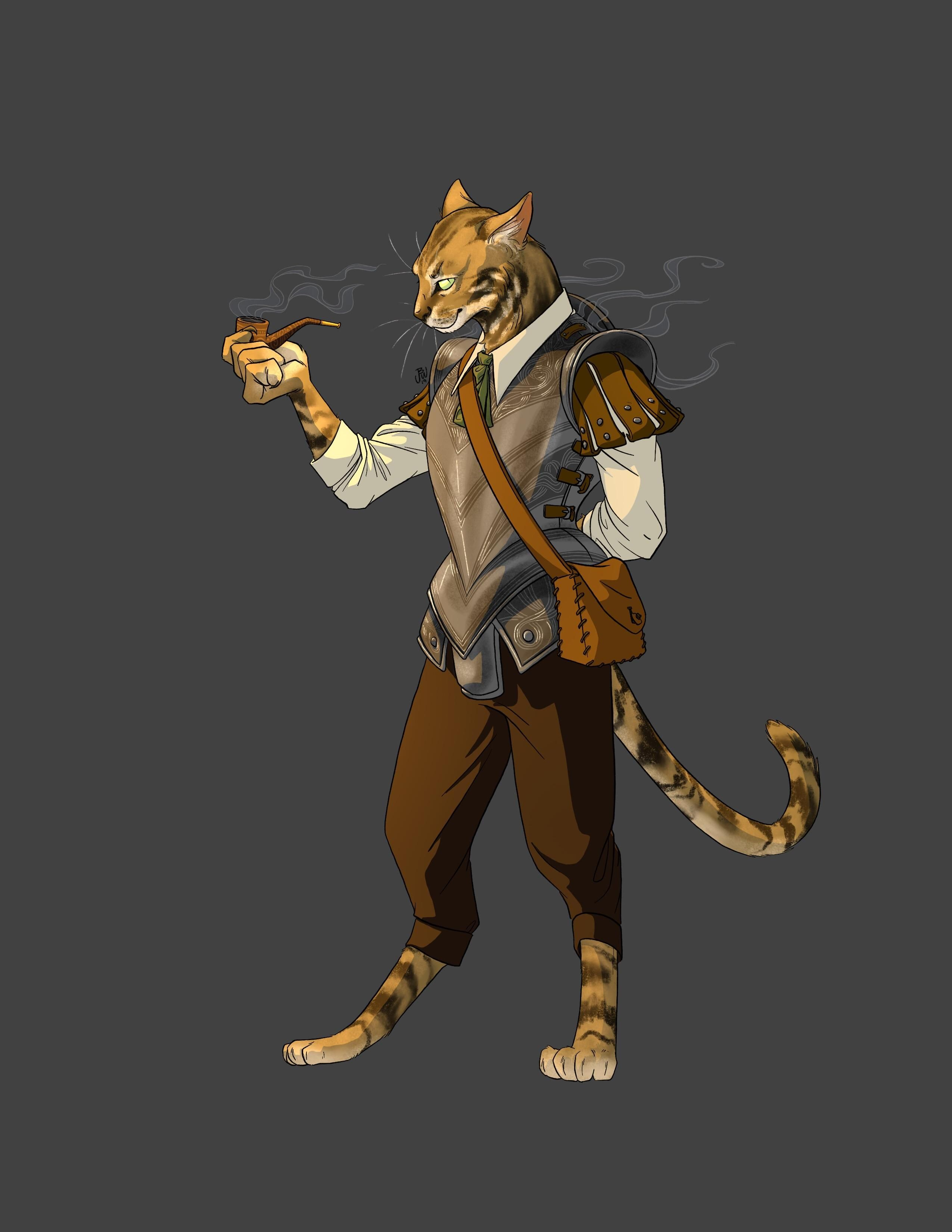 200 Npcs Ideas Character Portraits Fantasy Characters Rpg Character Check out inspiring examples of tabaxi_monk artwork on deviantart, and get inspired by our community of talented artists. character portraits fantasy characters