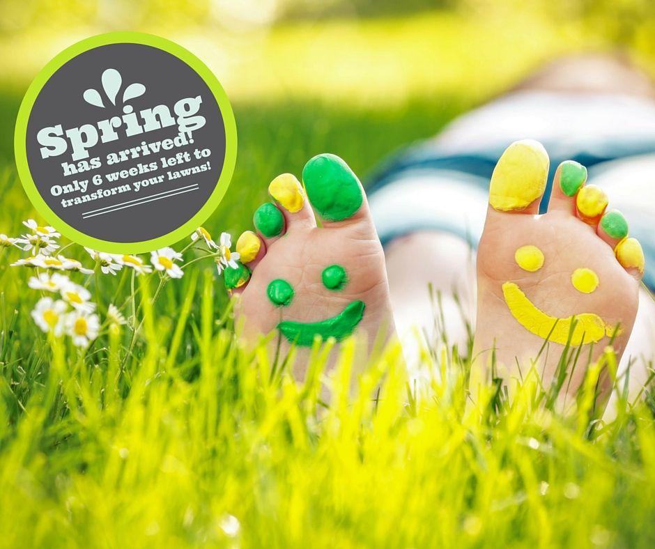 Spring has arrived! This is your last chance to book a lawn treatment and have your lawn in tip top shape for summer. Only 6 weeks before it's too late!