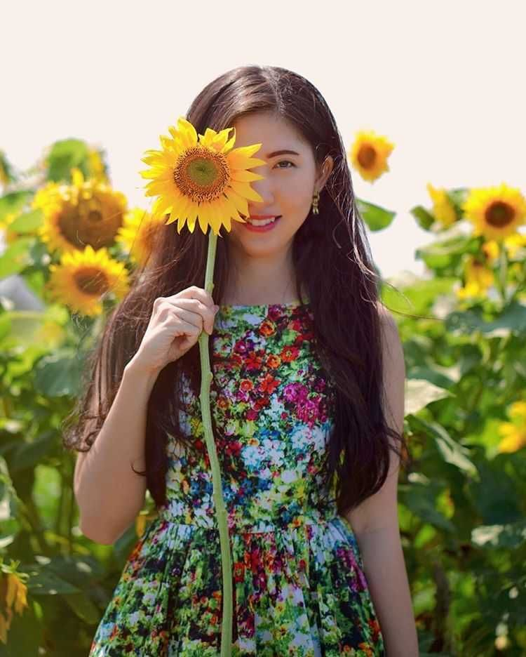 Taman Bunga Matahari Jogja Tiket Masuk