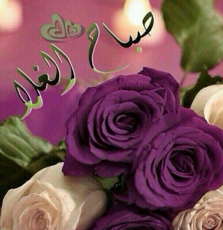 صباح الغلا Good Morning Arabic Morning Greeting Islamic Images