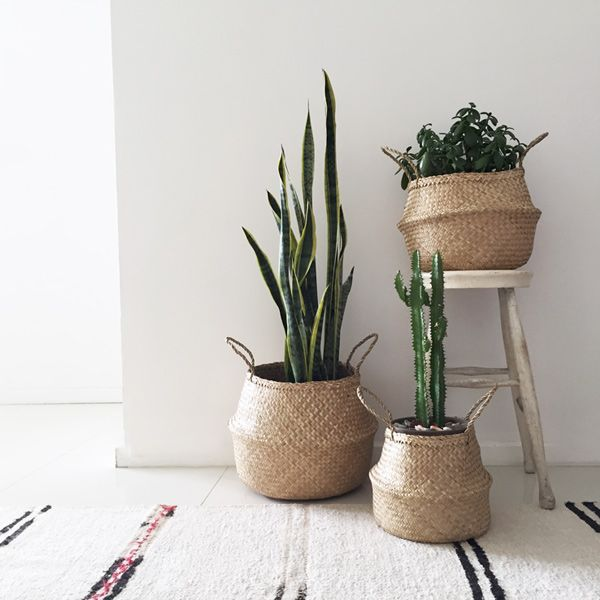 seagrass basket nests pinterest bohemian plants and interiors. Black Bedroom Furniture Sets. Home Design Ideas
