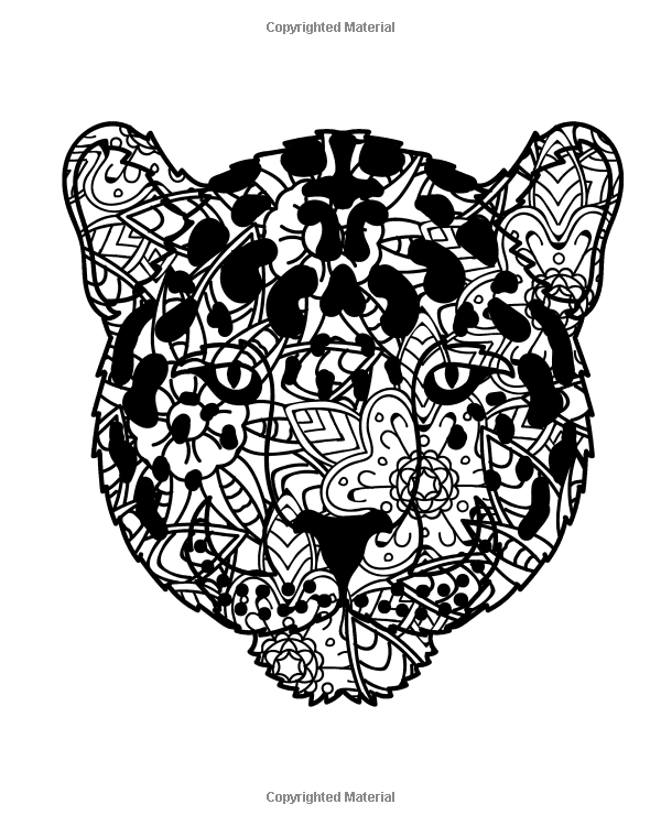 Amazon Wild Cat Coloring Book For Adults Big