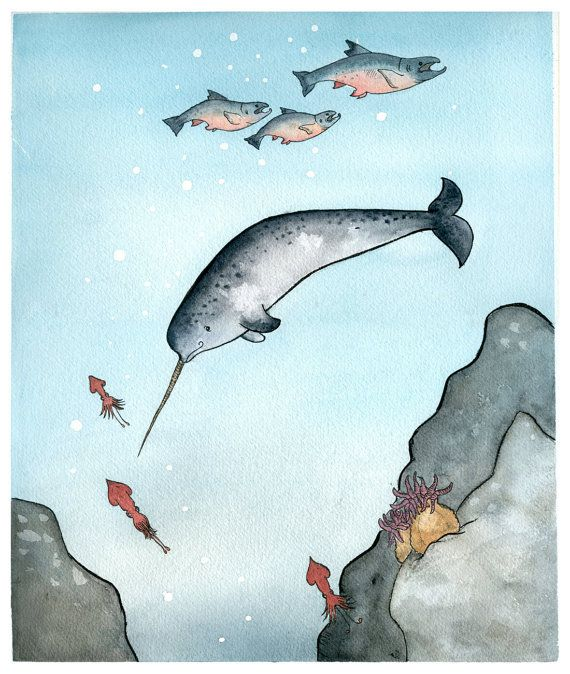 Giclee -Narwhal Swimming In
